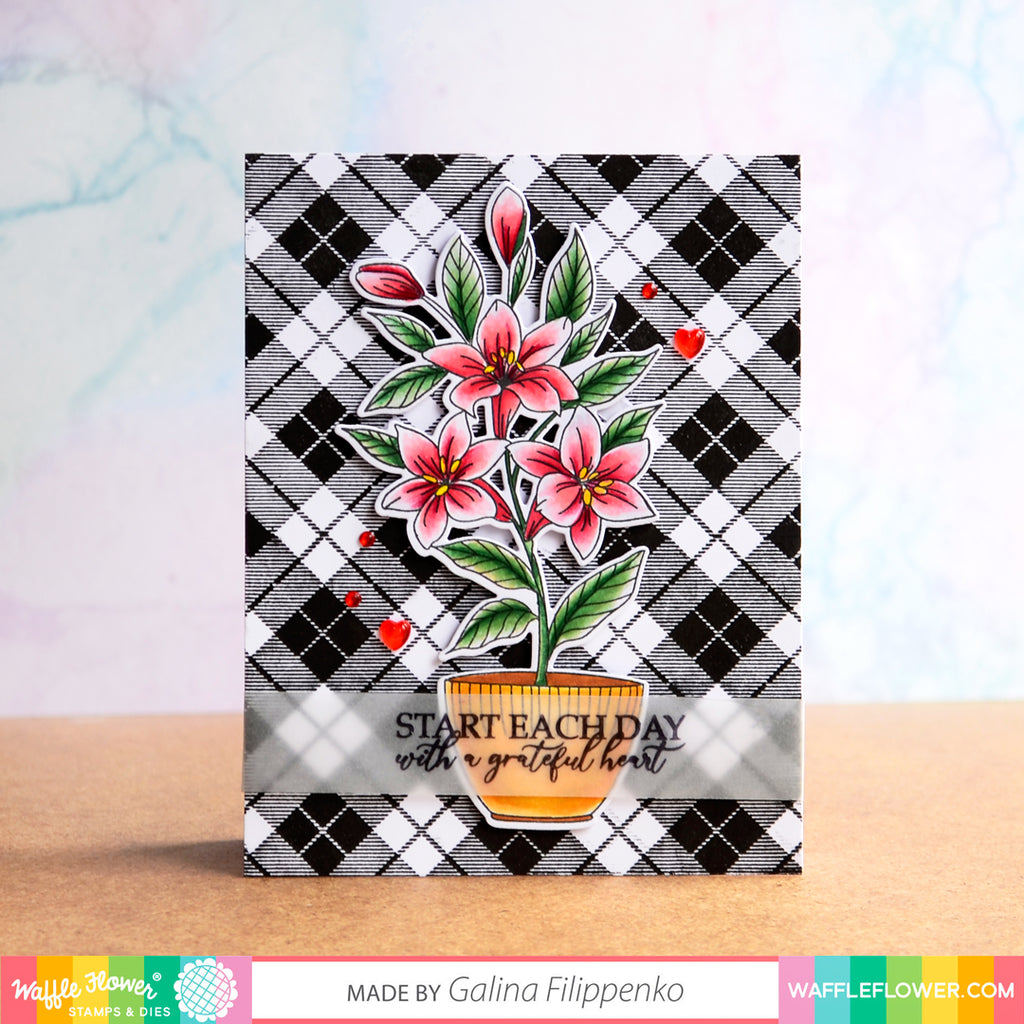 Floral Bundle Inspiration with Galina