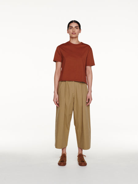 Sparke Pant in Reed