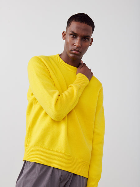 Sorello Cashmere Knit In Acid - Studio Nicholson