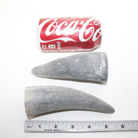 2 Raw Unfinished Cow Horn Tips #0114 Natural colored