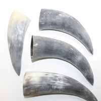 4 Raw Unfinished Cow Horns #0414 Natural Colored