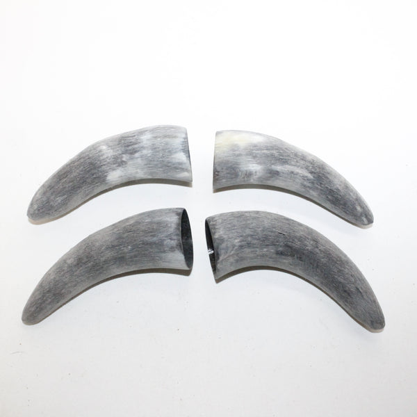 4 Raw Unfinished Cow Horn Tips #5013 Natural Colored