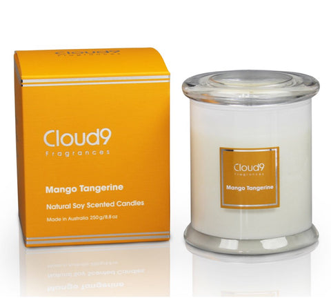 Cloud 9 Fragrances Mango Tangerine Jar Candle 250g