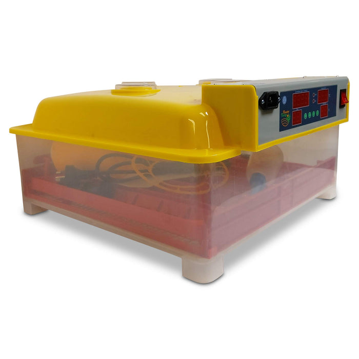 Automatic 60 Egg Incubator + Accessories Hatching Eggs Chicken Quail Duck Goose