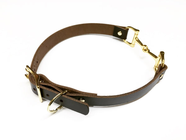 Charming Equestrian Leather Dog Collar, Leather Horse Bit Dog Collar, Horse Lover Dog Collar