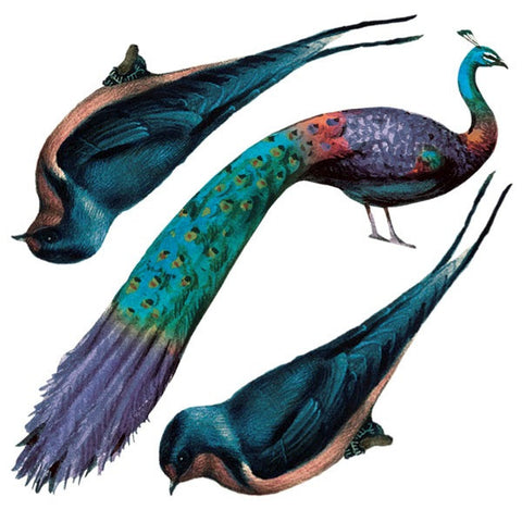 Peacock - Set of 2