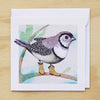 Card - Double-barred Finch
