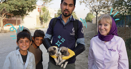 Mayhew International: Meet the people who are transforming the lives of street dogs in Kabul, Afghanistan