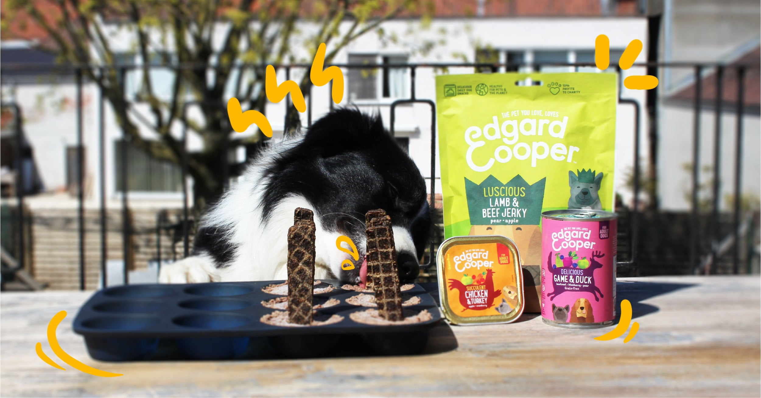 Dog licking E&C ice creams with E&C products in shot.