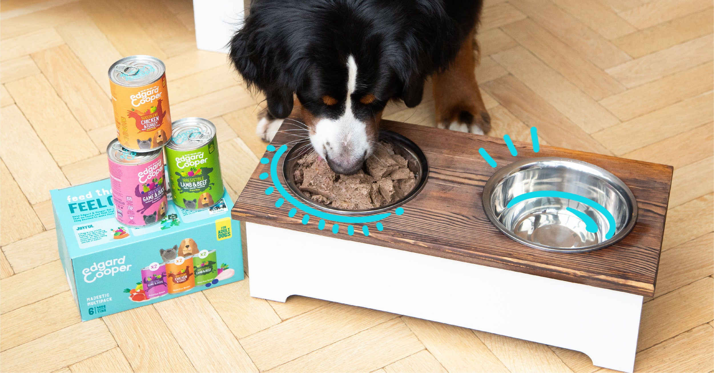 Photo of dog eating Edgard & Cooper wet food out of bowl.