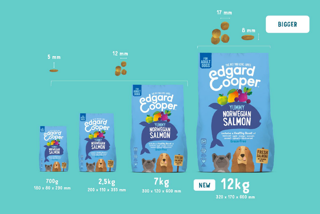 dog kibble sizes overview