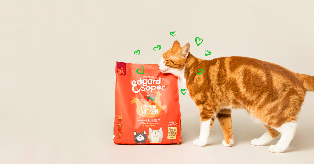 Cat with bag of Edgard & Cooper kibbles.