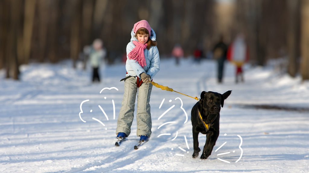 Girl is skiing with her dog