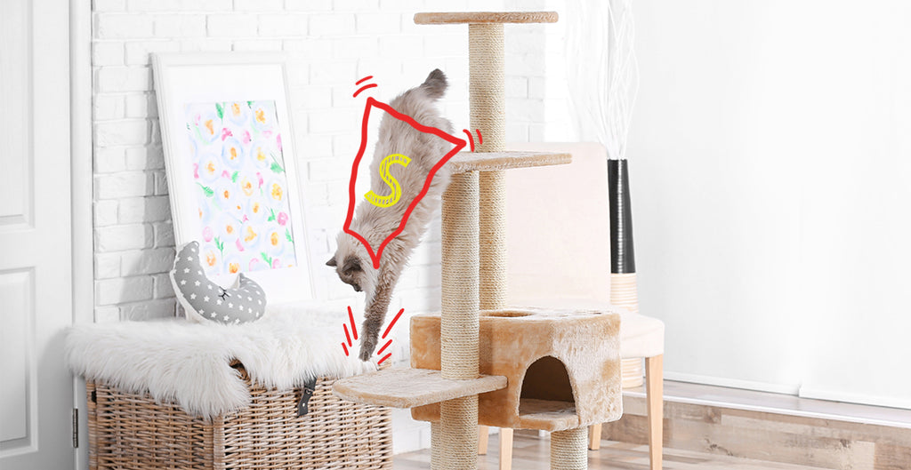 Supercat on a cat tower