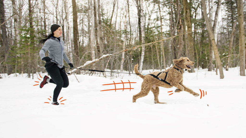 Woman and dog running together in the snow.
