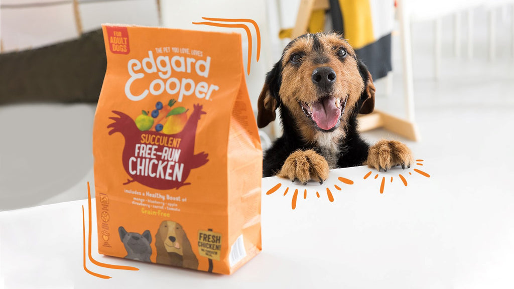 Dog puts its paws on the table while drooling to an Edgard & Cooper kibble bag