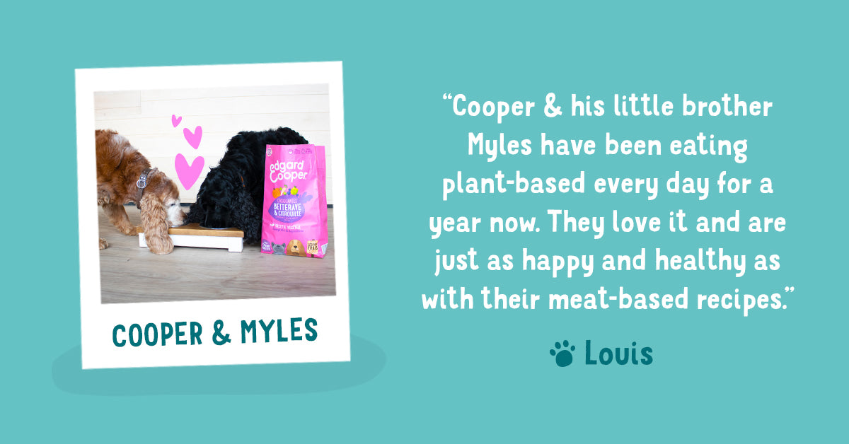 Review of Louis about Edgard & Cooper plant-based kibble