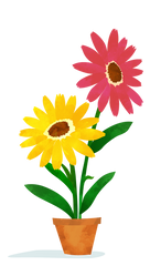 Illustration of gerbera flowers.