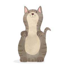 Illustration of cat with whiskers pointing to side.
