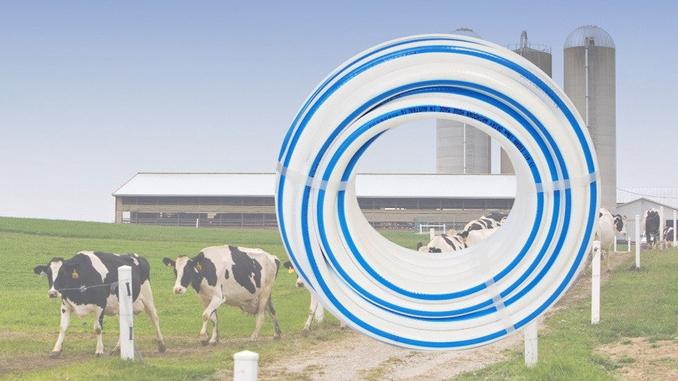 Tailor-made Wash Down Hose for the Dairy Industry