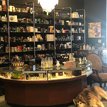 Inside the Fragrance Vault store