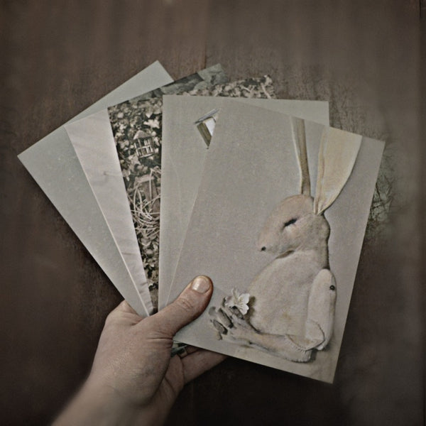 5 x Greetings Card By Mister Finch (Series 2)