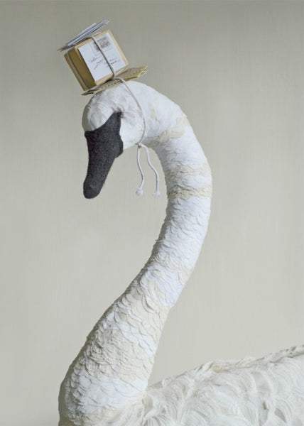 Swan With Post  Card By Mister Finch