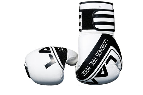 LAM elite Boxing gloves