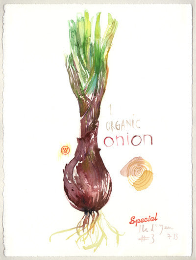 Organic onion. Original watercolor painting