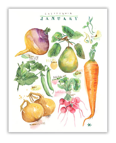 January vegetables in California