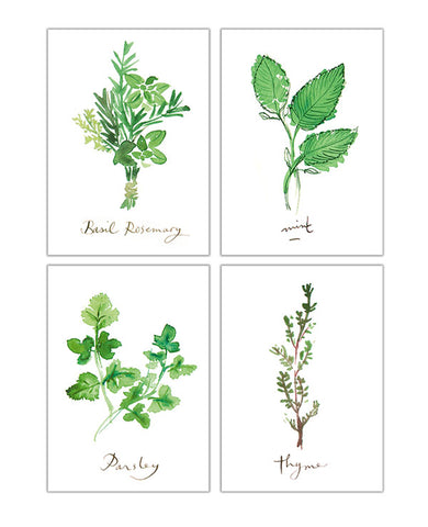 Set of 4 Herb prints - 5X7 inches