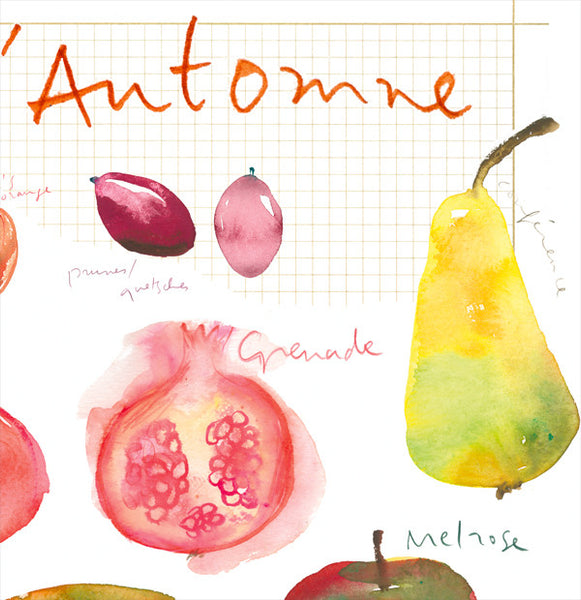 Fall fruits - In french