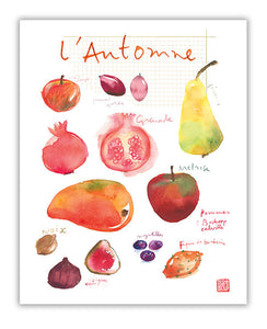 Fall / Autumn fruits - In French