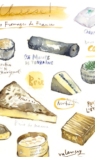 Cheese - Les fromages de France