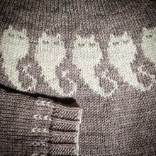 Load image into Gallery viewer, The Ghostiecat Sweater just-add-yarn knitting kit