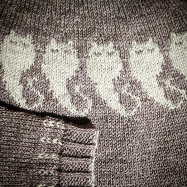 The Ghostiecat Sweater just-add-yarn knitting kit