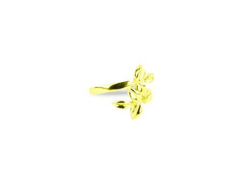 """Eukleia"",The Glory Yellow Gold Ring"