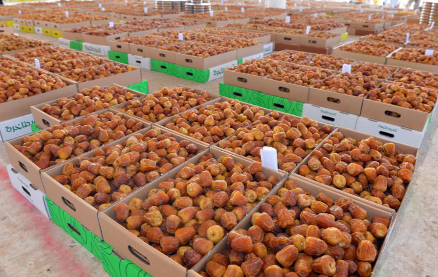 World's biggest date palm festival in Saudi Arabia