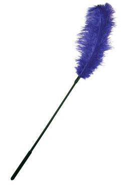 Ostrich Feather Tickler