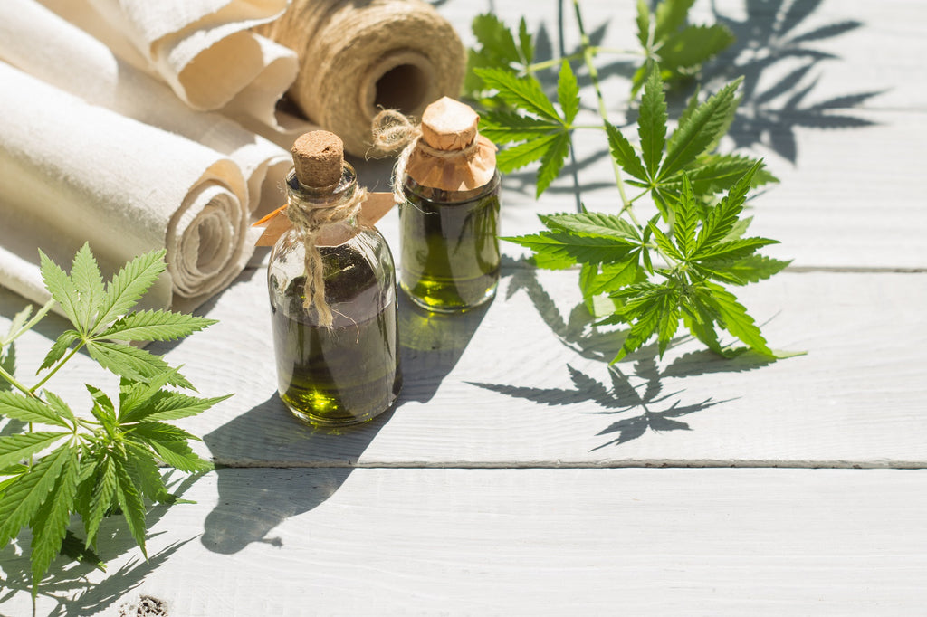 A Beginner's Guide to Hemp Oil for Curing Pain