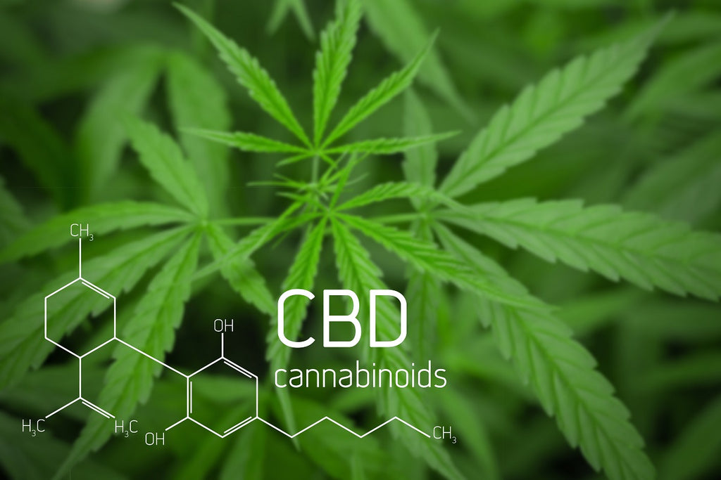 Unfolding the Medical Benefits of CBD Oil