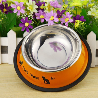 Colorful Stainless Steel Cat Food Bowls - Just Love Cats