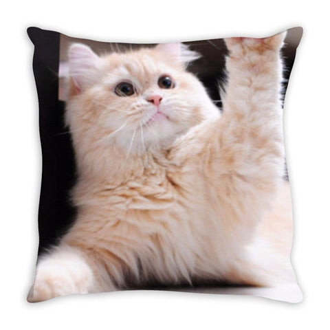 Custom Cat Throw Pillow
