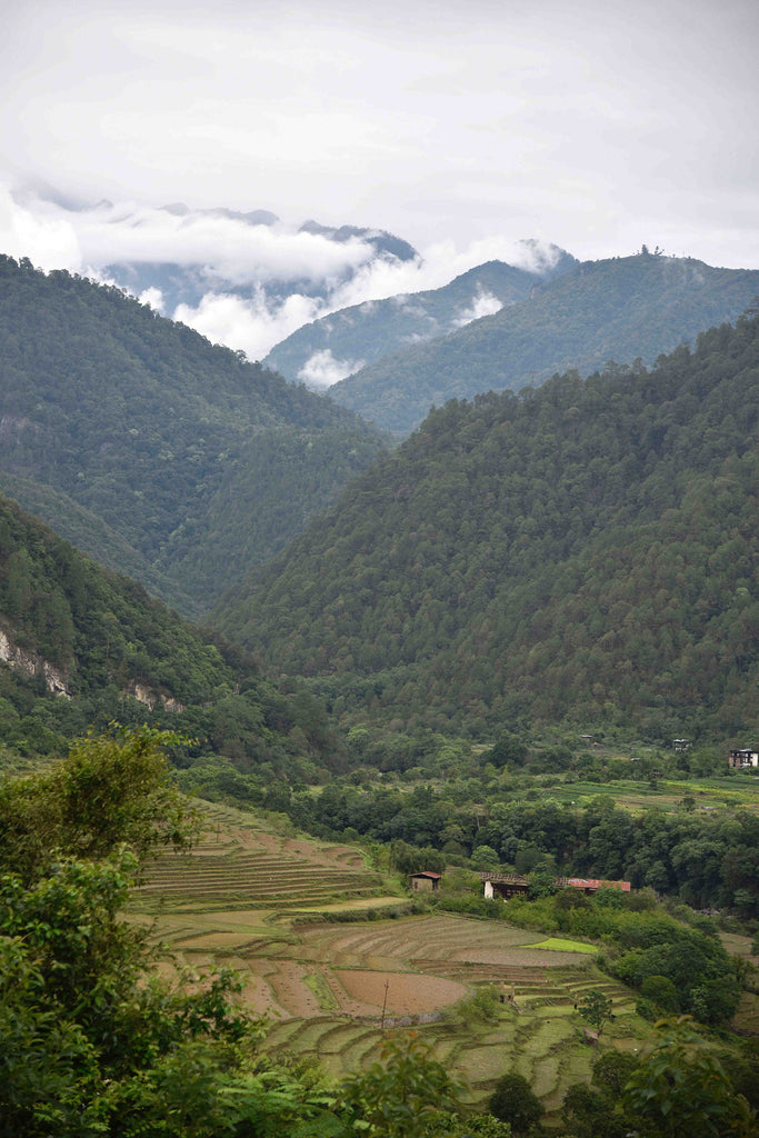 Bhutan countryside Joel Einhorn Tour of the Dragon