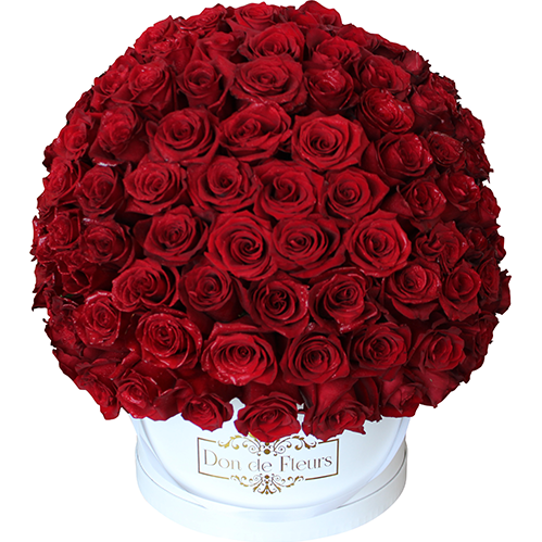 Large Round Box (200+ Roses) - Fresh Roses