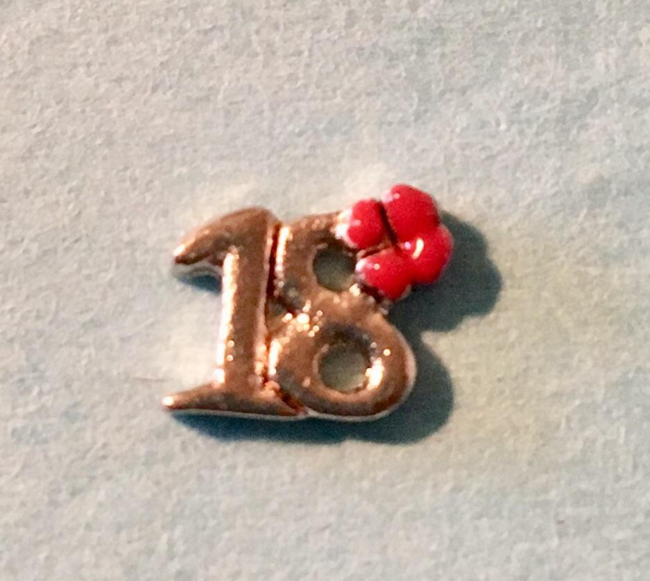 Memory Locket Charm - Number 18 (with red flower)