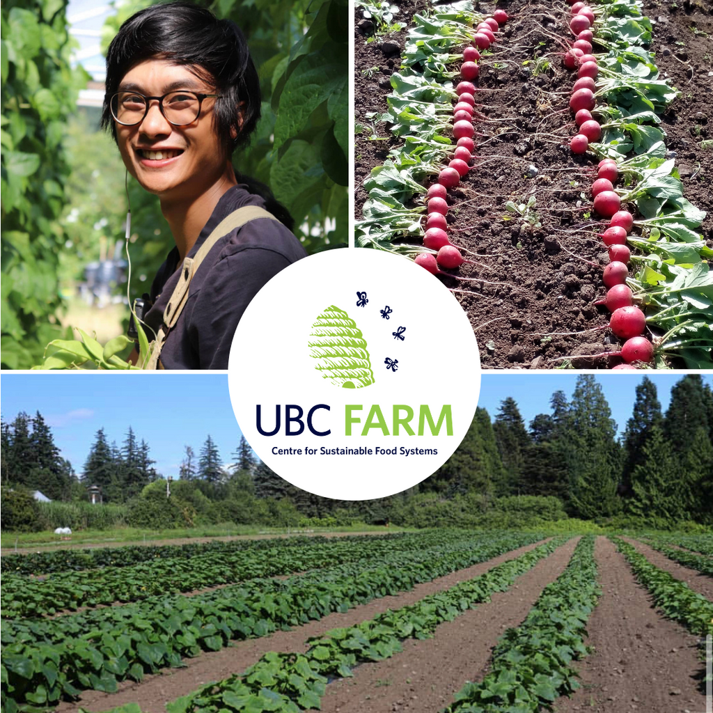 Meet BCESC Member Evan Goh of UBC Farm