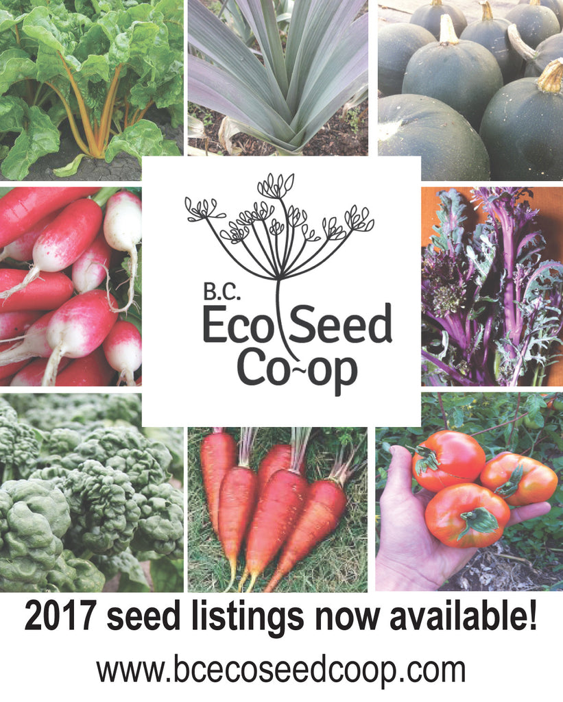 Our 2017 Seed Listings Are Online!