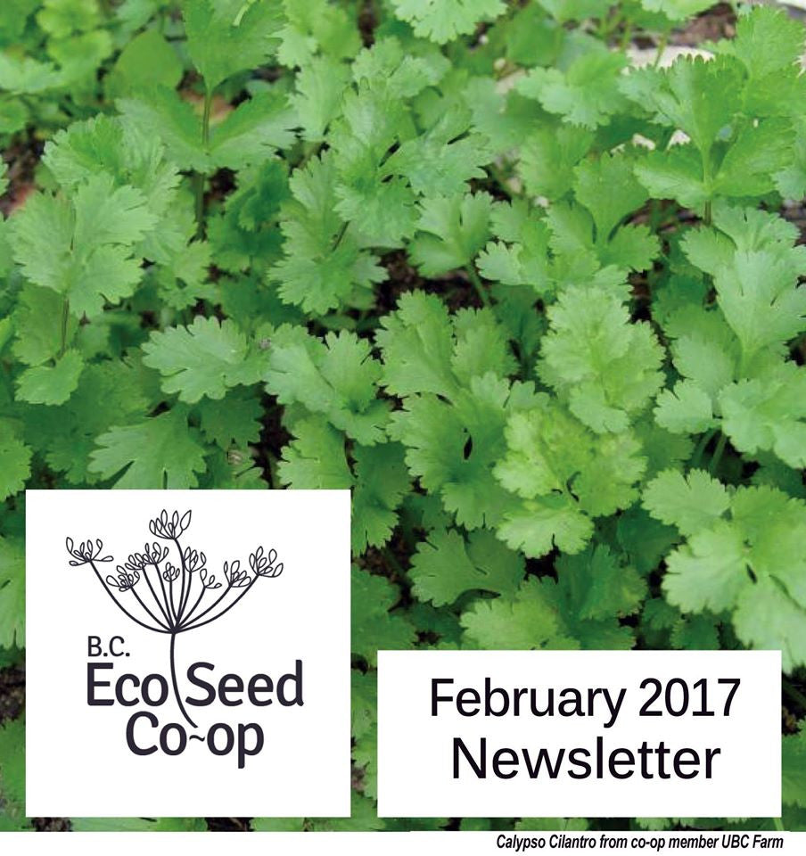 February Newsletter now in your inbox