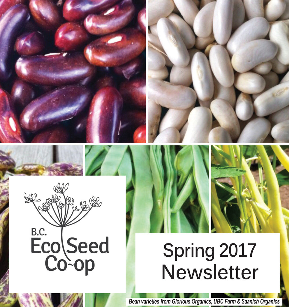 Spring Newsletter now in your inbox